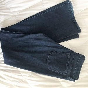 BANANA REPUBLIC | Wide Leg Jean | 30 or 10